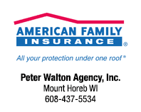 American Family Insurance Peter Walton Agency